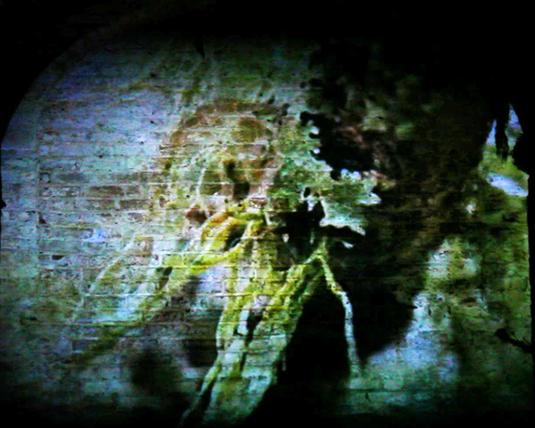1. crypt