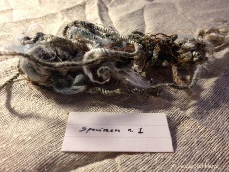 specimen n1