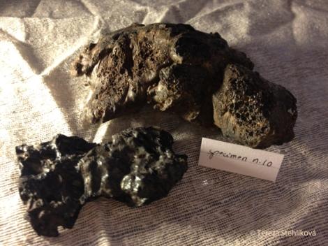 specimen n10