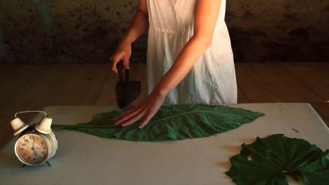 leaf ironing
