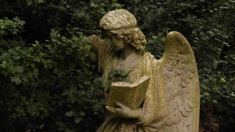 angel reaching