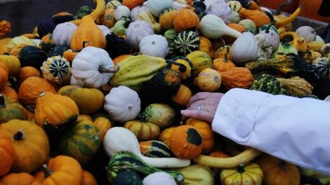 pumpkin-hand
