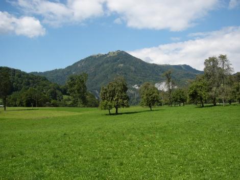 jb-landscape2
